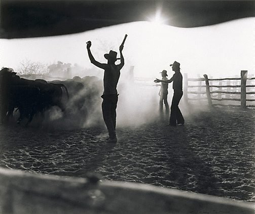 An image of Changing yards, 'Millungera', North Queensland by Max Dupain