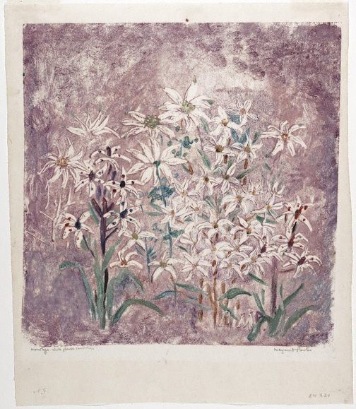 An image of White flowers by Margaret Preston