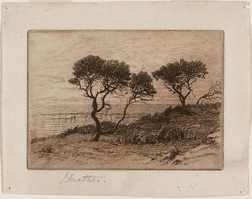 An image of Ti-trees by the shore by John Mather