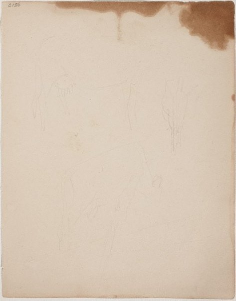 An image of (Cow studies) (Early Sydney period) by William Dobell