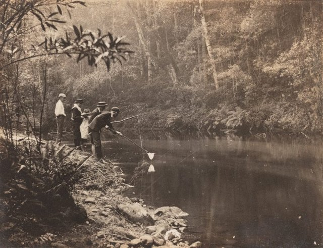 An image of Untitled (fishing at Hazelbrook)