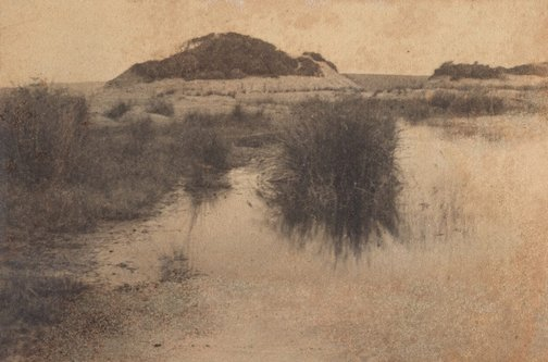 An image of Untitled (swamp) by Norman C Deck