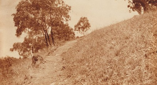 An image of Untitled (path along hillside) by Norman C Deck