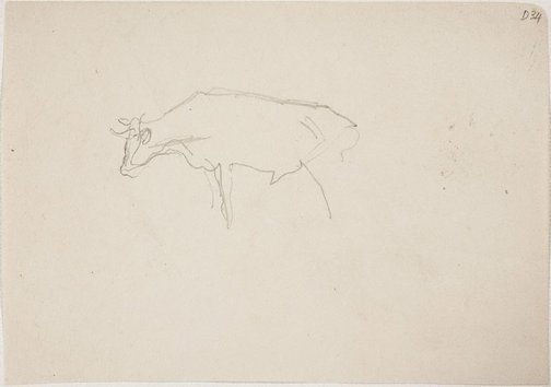 An image of (Cow) (Sketches from Wangi and Lake Macquarie) by William Dobell