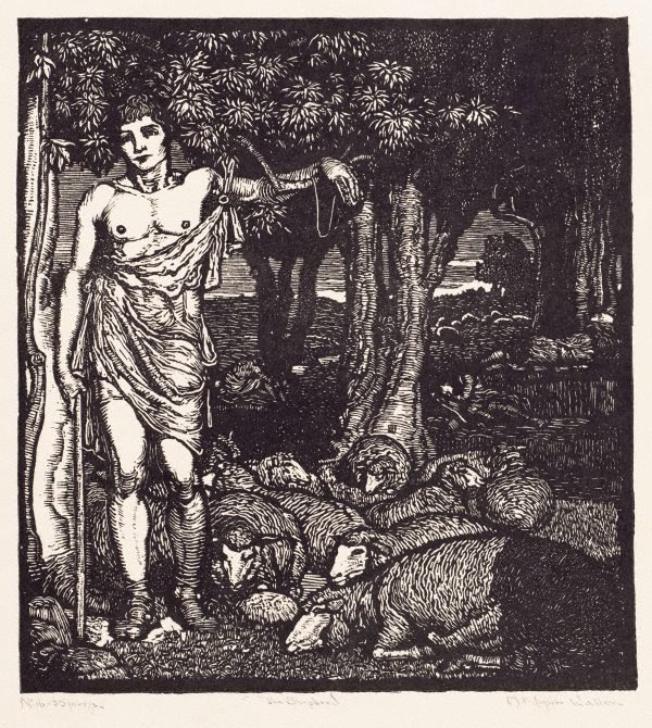 An image of The shepherd
