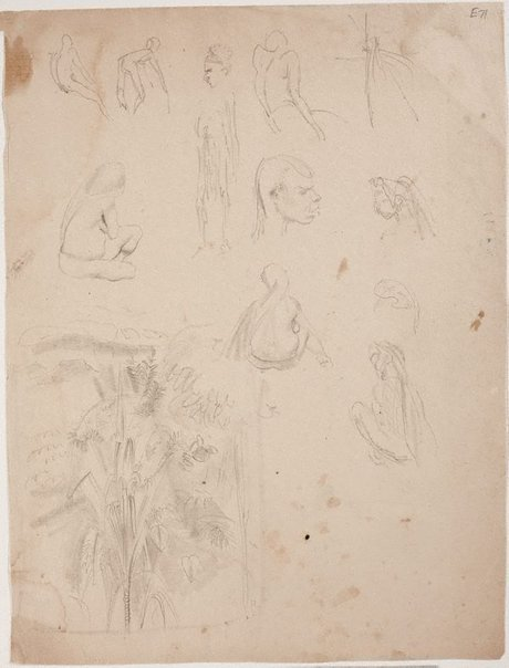 An image of (Figure studies and tree study) (Landscapes and natives from New Guinea) by William Dobell