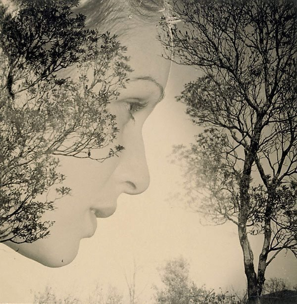 An image of Untitled (Woman profile and trees)