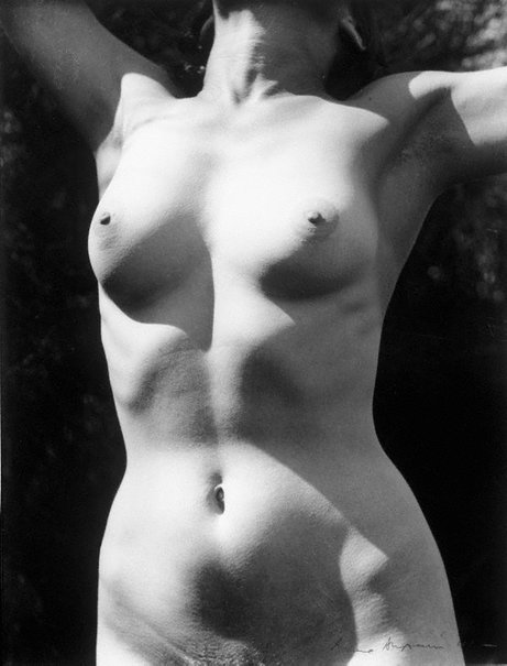 An image of Untitled (Nude torso - arms up) by Max Dupain