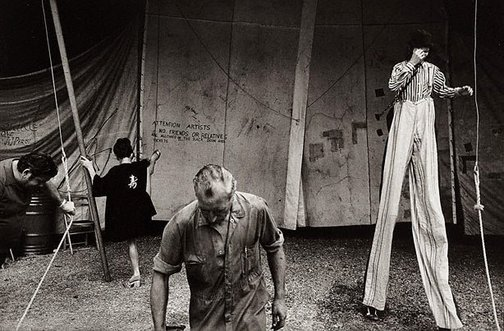 An image of Untitled (circus) by Philip Quirk