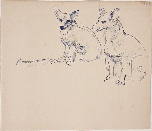An image of (Two Dogs sitting) (Late Sydney Period) by William Dobell