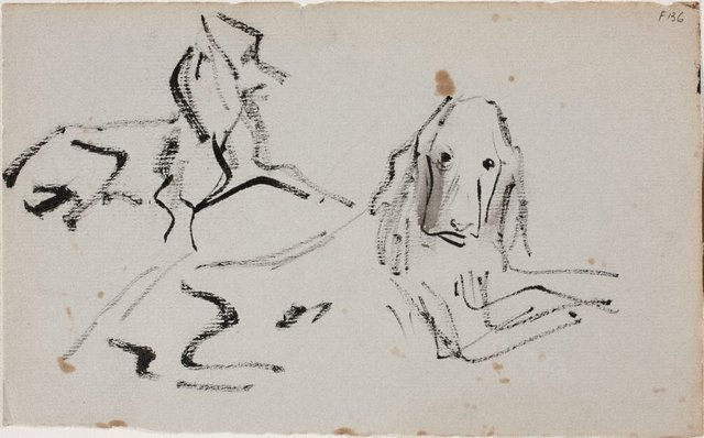 An image of (Study of two dogs) (Late Sydney Period)
