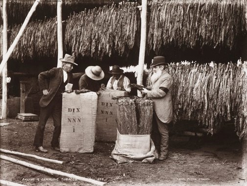 An image of Baling and sampling tobacco by Unknown, Kerry & Co
