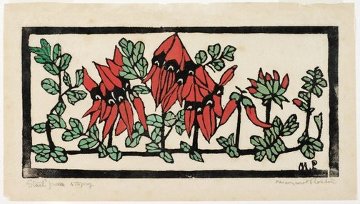 An image of Sturt's desert pea by Margaret Preston