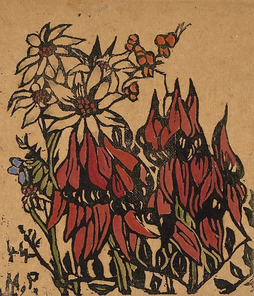 An image of Sturt's pea by Margaret Preston