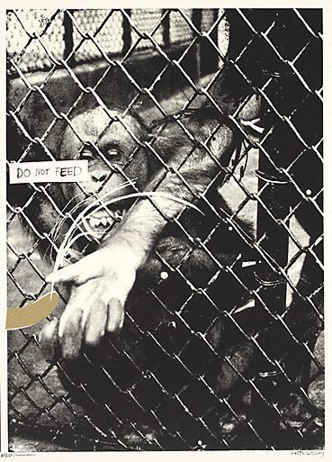 An image of Swinging monkey 2: no. 2 by Brett Whiteley