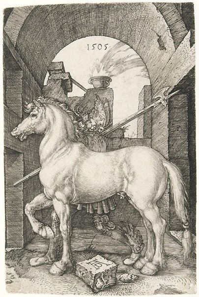 An image of The small horse by Albrecht Dürer