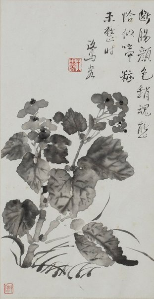 An image of Begonia by WANG Yongyu