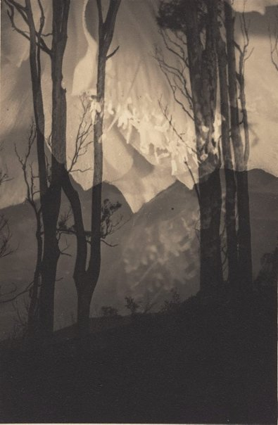 An image of Distant hills by Olive Cotton