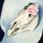 Image: Georgia O'Keeffe Horse's skull with pink rose 1931 (detail), Los Angeles County Museum of Art © Museum Associates/LACMA