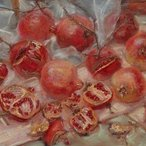 Image: Janet Dawson Scribble rock pomegranates (diptych) 1999 (detail), AGNSW © Reproduced with permission, 1999