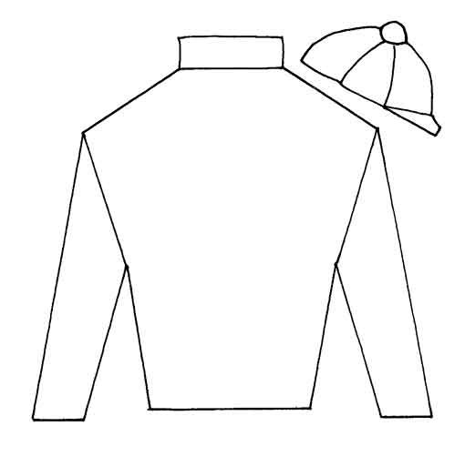 Design Your Own Jockeys Silks Kentucky Derby Party Kentucky Derby Derby Ideas